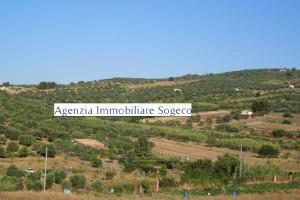 V/754 Santa Flavia (PA) collina Contrada Accia graziosa villetta indipendente con giardino tre (3) vani ed accessori