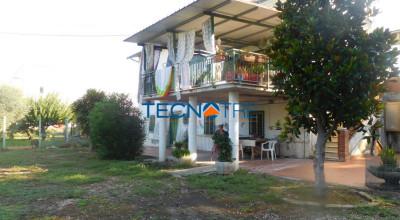 Colonnella